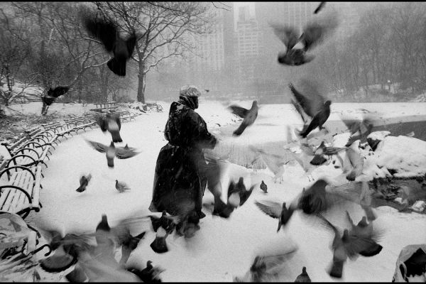 Lola in Central Park, New York City, USA, 1992, © Bruce Davidson/Magnum Photos