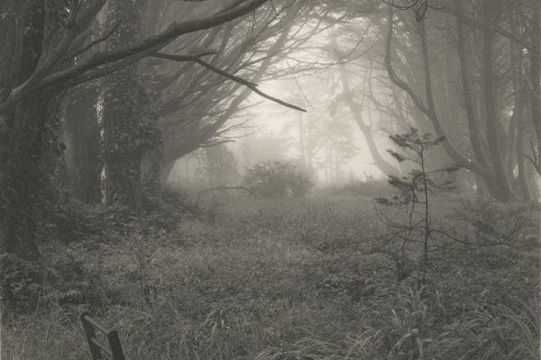 Mark Citret, Abandoned Chairs in Fog, Skyline Dr. 3/22, 2010